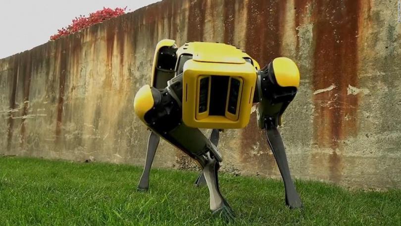 19 ejemplos de Robots con Inteligencia Artificial